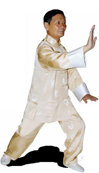 Maestro qi ke bao - tai chi chuan estilo yang